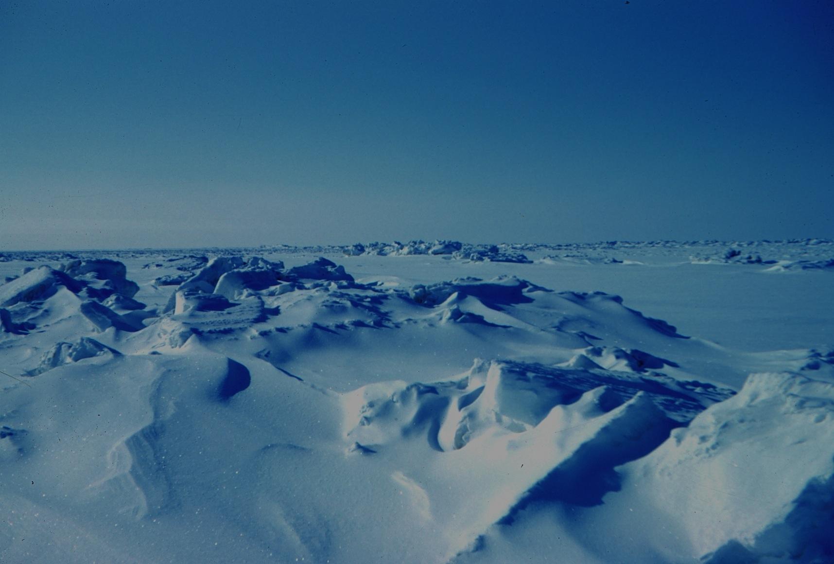 Arctique Arctic Glace Ice