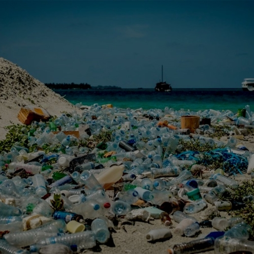 Plastique Pollution